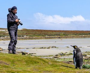 Falklands: Whale Bone Cove