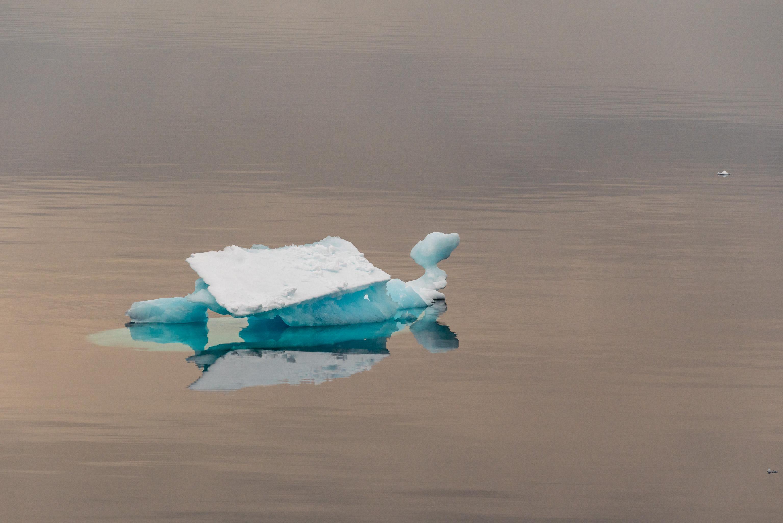 PS115: Ostgrønlandsee